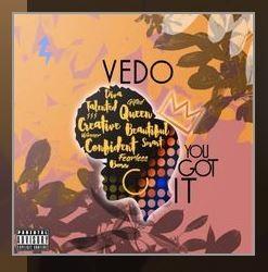 you got it vedo lyrics english